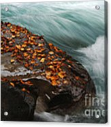 Rocky Mountain Stream Acrylic Print