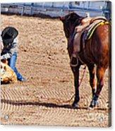 Rodeo 11 Acrylic Print