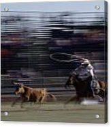 Rodeo Cowboy Trying To Lasso A Running Acrylic Print by Chris Johns