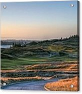 Rolling Green And Gold - Chambers Bay Golf Course Acrylic Print