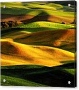 Rolling Hills Of Palouse Acrylic Print