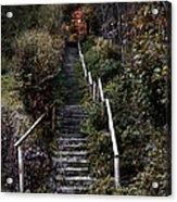 Romantic Pathway In Fall Acrylic Print