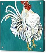 Rooster Call Acrylic Print