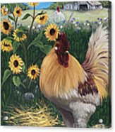 Rooster One Eyed Jack Acrylic Print