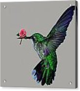 Rose Baring Bird Acrylic Print