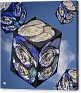 Rose Cube Acrylic Print