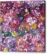 Rose Festival Acrylic Print