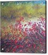 Rose Hips  Acrylic Print