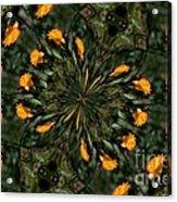 Rose Kaleidoscopic  Acrylic Print