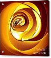 Rose Series - Gold Acrylic Print