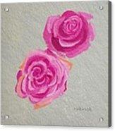Rose Study Acrylic Print