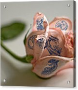 Rose Tatoo Acrylic Print