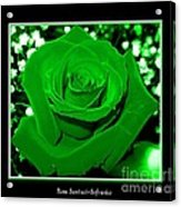 Rose With Green Coloring Added Acrylic Print
