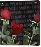 Roses Glow Against The Black Granite Acrylic Print