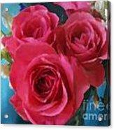 Roses In January Acrylic Print