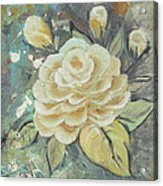 Rosey Acrylic Print