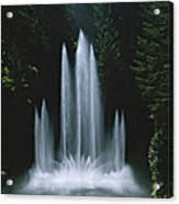 Ross Fountain Dancing In Front Of Lush Acrylic Print