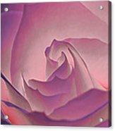 Rosy Daydreamer Acrylic Print