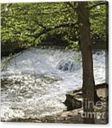 Rouge River At Fair Lane Acrylic Print