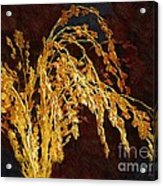Rough Harvest Acrylic Print