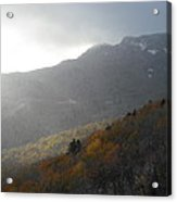 Rough Ridge Trail Acrylic Print