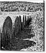Row Acrylic Print