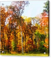Row Of Autumn Trees Acrylic Print
