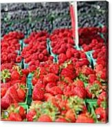 Rows Of Berries At Market Acrylic Print
