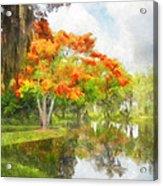 Royal Poinciana Lake Acrylic Print