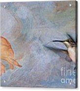 Ruby Throated Hummingbird 2 Acrylic Print