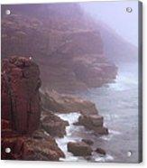 Rugged Seacoast In Mist Acrylic Print