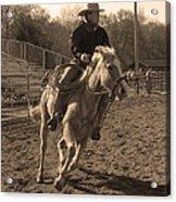 Running The Horse Acrylic Print