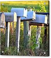 Rural Mail Boxes In Color Acrylic Print