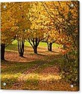 Rural Scene In Autumn Acrylic Print