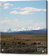 Rural Wyoming - On The Way To Jackson Hole Acrylic Print