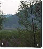 Rush Creek In The Mist Acrylic Print