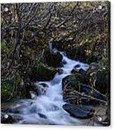 Rushing Creek Acrylic Print