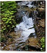 Rushing Water On Mt Spokane Acrylic Print