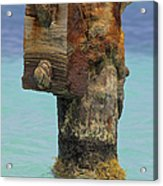 Rusted Dock Pier Of The Caribbean Iv Acrylic Print