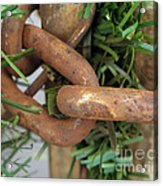 Rusted Links Acrylic Print