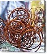 Rusted Spring 1 Acrylic Print
