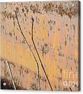 Rustic Landscape Acrylic Print