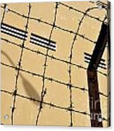 Rusty Barbed Wires Fence  Acrylic Print