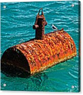 Rusty Bobber Acrylic Print