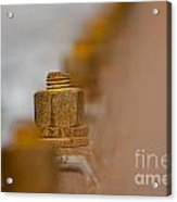 Rusty Screw Acrylic Print