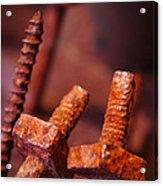 Rusty Screws Acrylic Print