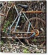 Rusty Wheel Of Bicycle Acrylic Print