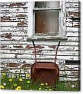 Rusty Wheelbarrow And Wildflowers Acrylic Print