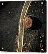 S Curve Acrylic Print by Odd Jeppesen