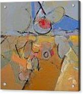 S W Acrylic Print